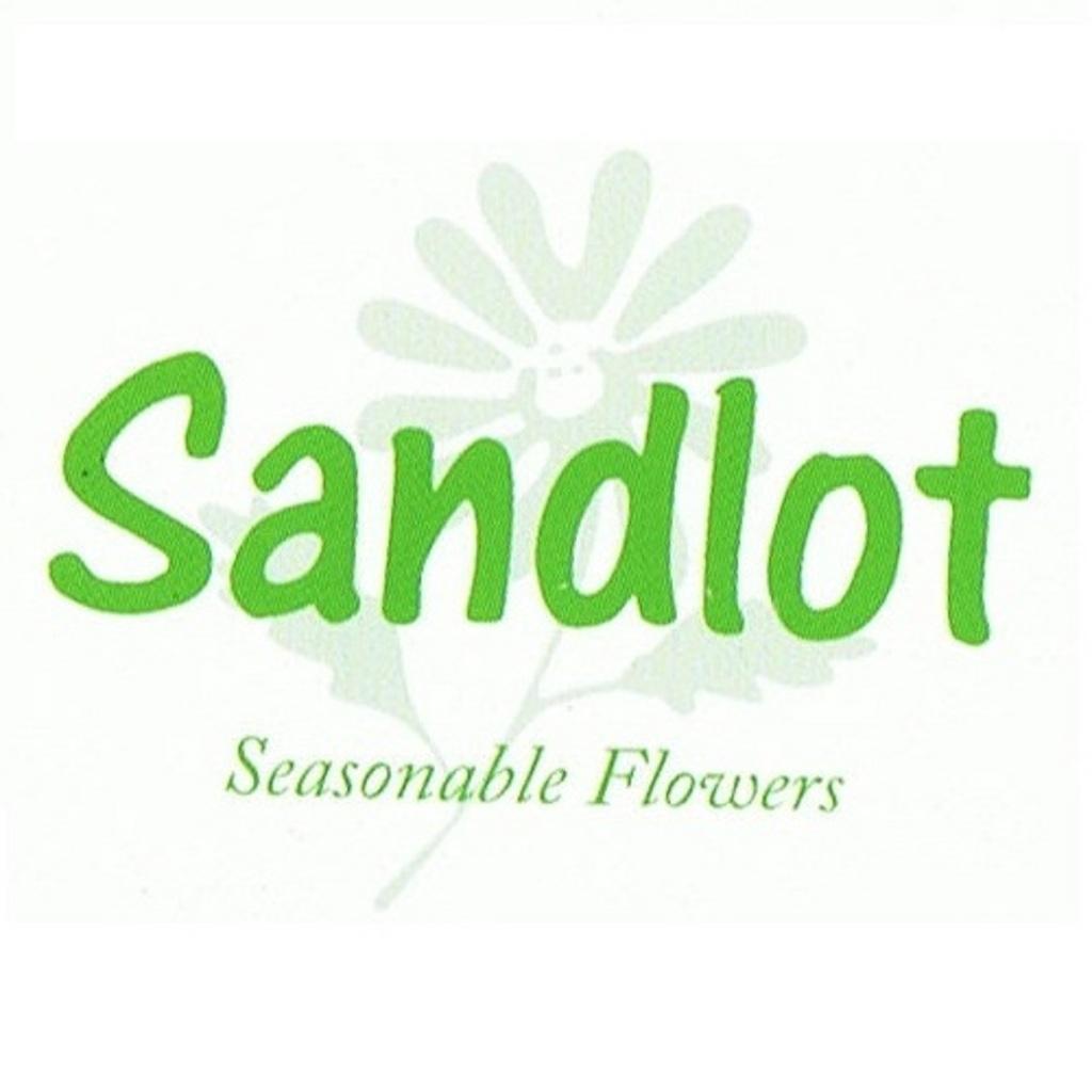 お花サンドロット
